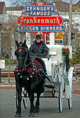 Make Zehnder's of Frankenmuth a part of your Christmas tradition
